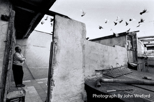 Sabah relaxes while his pigeons fly around the rooftops of Damascus Syria
